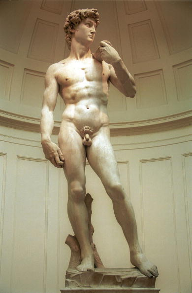 Sculpture「Michaelangelo's statue of David」:写真・画像(18)[壁紙.com]