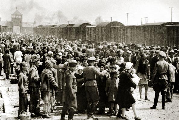 Arrival「Hungarian Jews」:写真・画像(5)[壁紙.com]