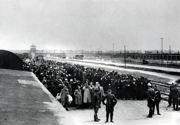 Arrival「Hungarian Jews」:写真・画像(8)[壁紙.com]