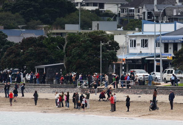 Killer Whale「Orca Whales Off St Heliers Bay In Auckland」:写真・画像(7)[壁紙.com]
