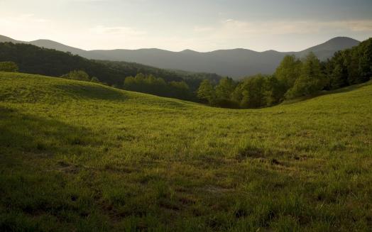Pasture「Appalachian Field」:スマホ壁紙(12)