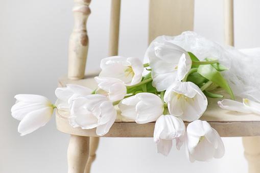チューリップ「Tulips on a chair」:スマホ壁紙(6)