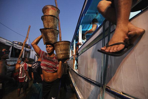 Dawn「Brazil Faces Environmental Challenges in Amazon Ahead of Rio+20 Earth Summit」:写真・画像(7)[壁紙.com]