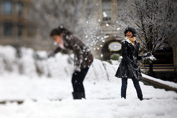 Snowball「More Snow And Freezing Temperatures Hit The UK」:写真・画像(5)[壁紙.com]
