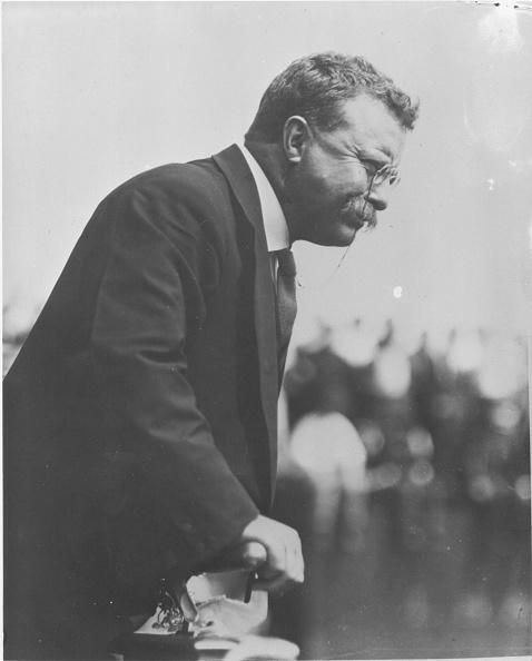 オハイオ州 クリーブランド「Teddy Roosevelt」:写真・画像(18)[壁紙.com]