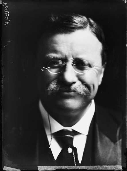 US President「Theodore Roosevelt」:写真・画像(11)[壁紙.com]