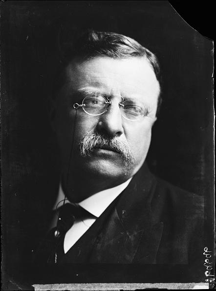US President「Theodore Roosevelt」:写真・画像(7)[壁紙.com]