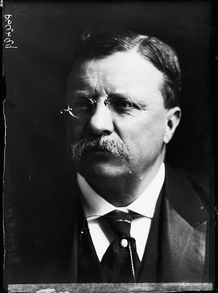 Mustache「Theodore Roosevelt」:写真・画像(15)[壁紙.com]