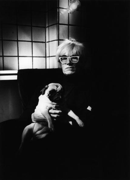 Director「Andy Warhol」:写真・画像(7)[壁紙.com]