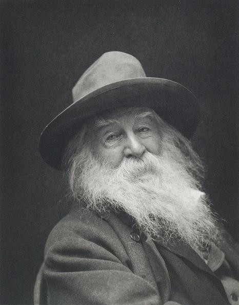 Beard「Walt Whitman」:写真・画像(19)[壁紙.com]