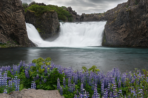 Basalt「Hjalparfoss Waterfall - Iceland」:スマホ壁紙(2)