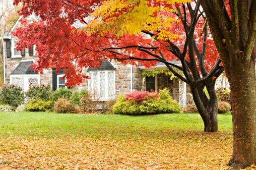 秋「高級な家族の家、秋にフロントの芝生」:スマホ壁紙(12)