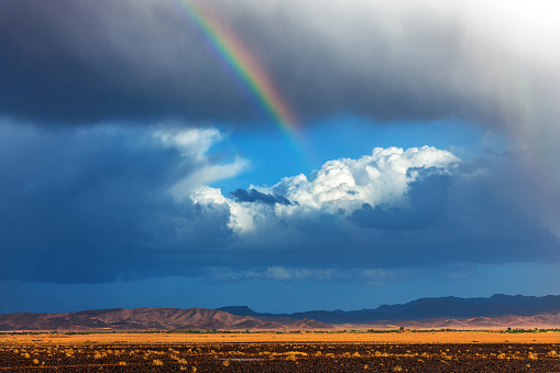 Rainbow「Storm in the Sahara desert in the afternoon,rainbow,Morocco」:スマホ壁紙(9)