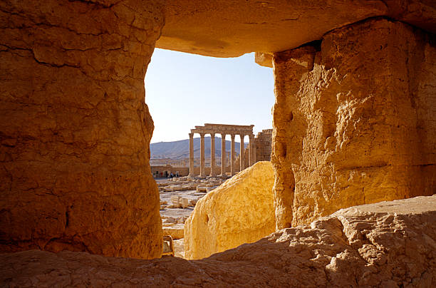 View on an ancient ruins in Palmyra, central Syria:スマホ壁紙(壁紙.com)