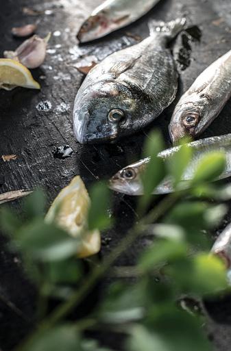 Sea Bream「Raw fish, sea bream, sea bass, mackerel and sardines」:スマホ壁紙(6)