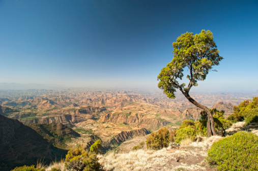 High Country「A large and wide mountain range in Ethiopia 」:スマホ壁紙(1)