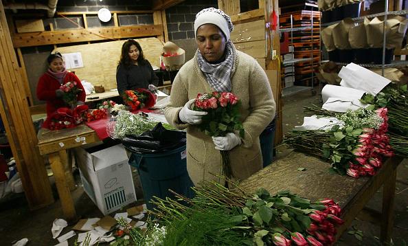 Silver Spring「Florists Prepare For St Valentine's Day Holiday」:写真・画像(8)[壁紙.com]