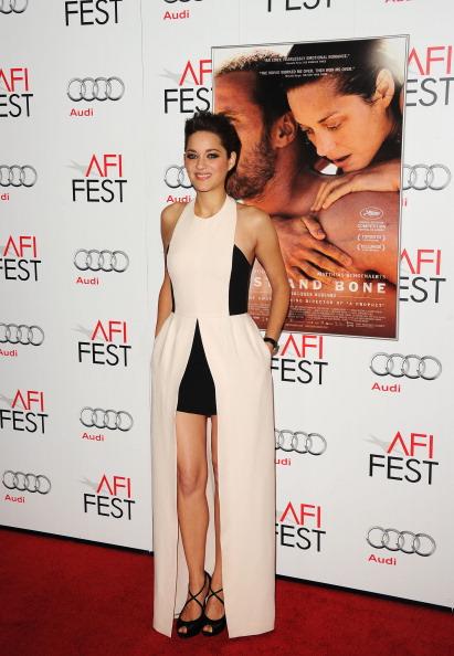 "Halter Top「AFI FEST 2012 Presented By Audi - ""Rust And Bone"" Premiere - Arrivals」:写真・画像(7)[壁紙.com]"