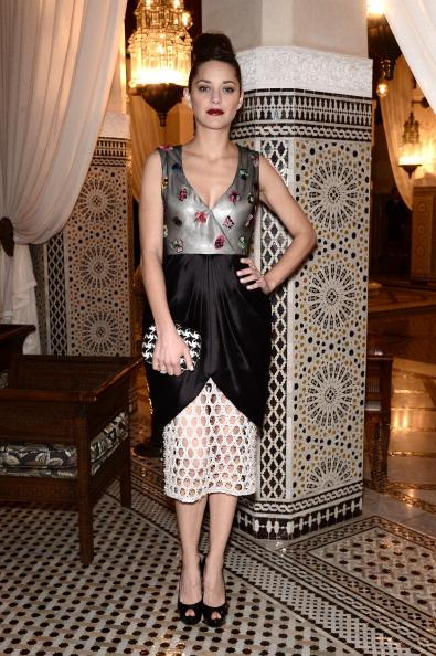Full Length「Dior Hosts Dinner At Marrakech International Film Festival」:写真・画像(14)[壁紙.com]