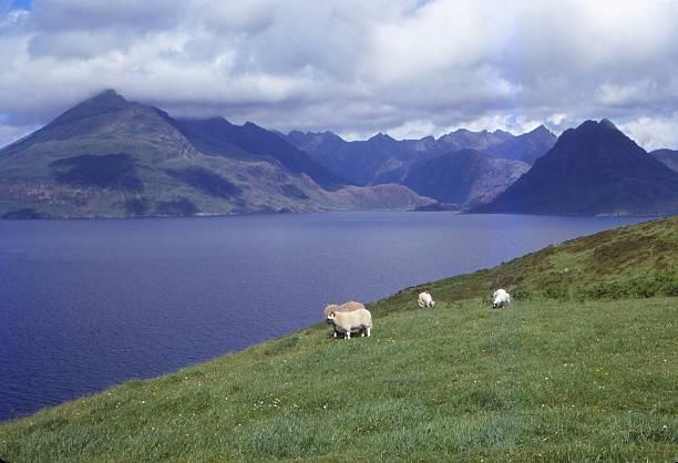 The Black Cuillin And Loch Scavaig Near Elgol:ニュース(壁紙.com)