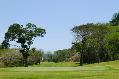 Putting - Golf「Putting green in tropical golf course」:スマホ壁紙(12)
