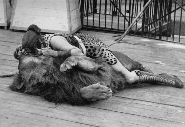 Females「The Lion's Mouth」:写真・画像(17)[壁紙.com]
