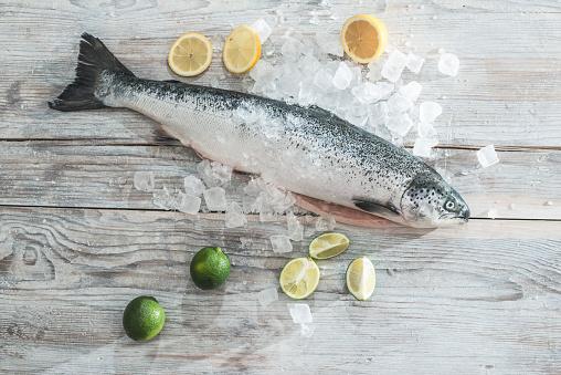 Raw Food「Raw salmon with ice, lime and lemons」:スマホ壁紙(12)