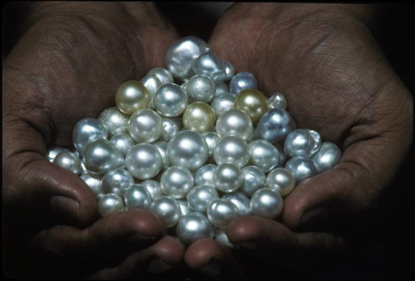 真珠「South Sea Pearls」:写真・画像(1)[壁紙.com]