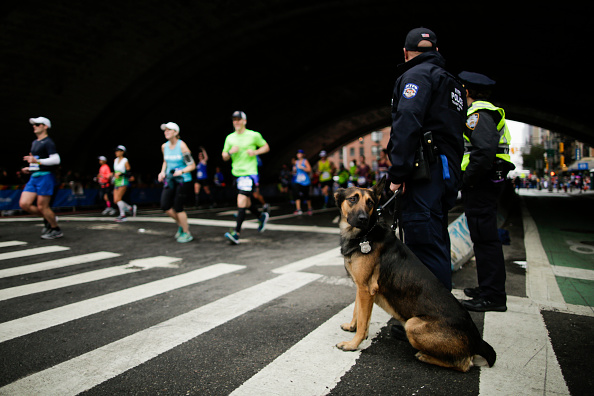 Sport「Security Increased During New York City Marathon In Wake Of Week's Terror Attack In NYC」:写真・画像(6)[壁紙.com]