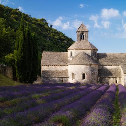 Abbey - Monastery「Snanque Abbey in Gordes, France」:スマホ壁紙(1)