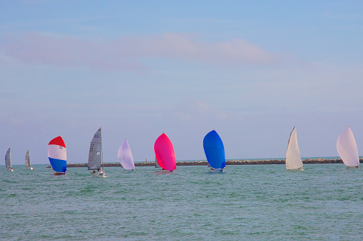 Miami Beach「Colorful sailboats, Miami Beach, Florida」:スマホ壁紙(17)