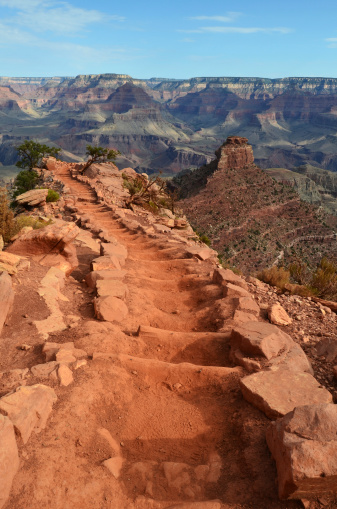 Kaibab National Forest「Grand Canyon South Kaibab Trail Vertical」:スマホ壁紙(14)