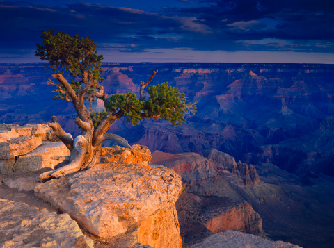 Colorado River「Grand Canyon National Park」:スマホ壁紙(4)