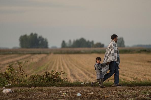 Europe「Migrants Gather on Serbian Border with Croatia」:写真・画像(11)[壁紙.com]