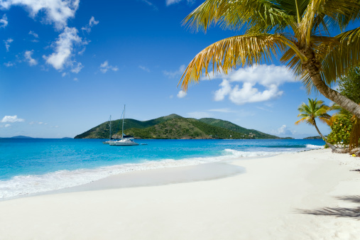 Frond「Sandy Cay, BVI - beautiful island in the Caribbean」:スマホ壁紙(4)