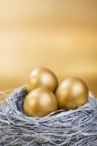 Animal Egg「Silver and Gold Nest Egg」:スマホ壁紙(6)