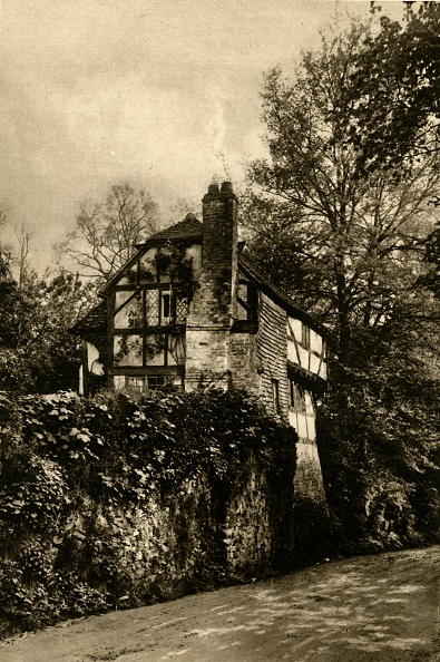 Ornamental Garden「Truly Rural - A Delightful Old Sussex Cottage At Amberley」:写真・画像(10)[壁紙.com]