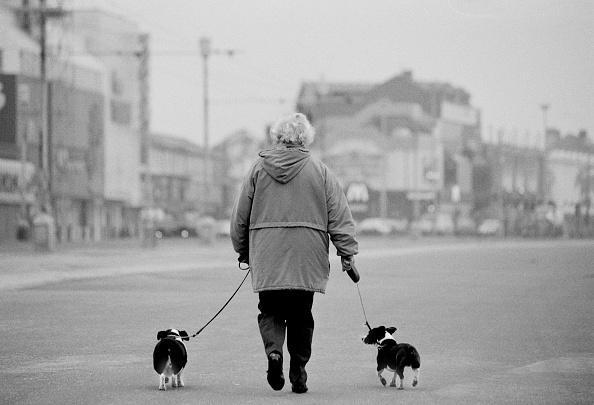 Pet Owner「A Dog, Man's Best Friend」:写真・画像(10)[壁紙.com]