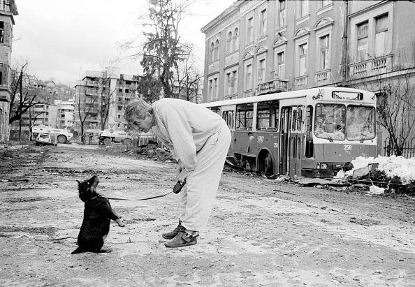 Tom Stoddart Archive「A Dog, Man's Best Friend」:写真・画像(2)[壁紙.com]