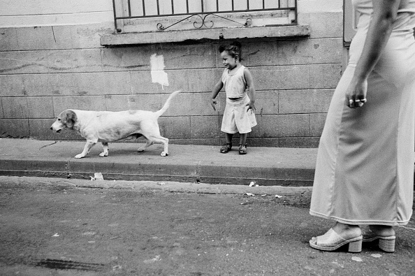 Pet Owner「A Dog, Man's Best Friend」:写真・画像(17)[壁紙.com]