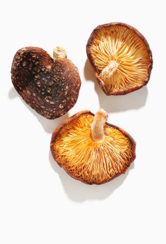 シイタケ「Dry mushroom」:スマホ壁紙(18)