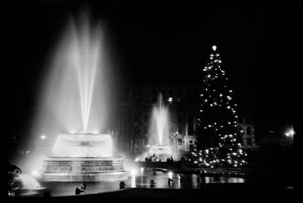 Fountains And The Christmas Tree In Trafalgar Square:ニュース(壁紙.com)