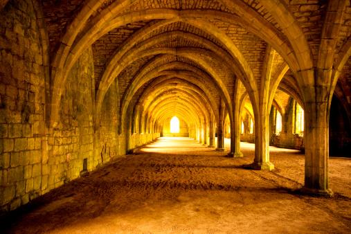Abbey - Monastery「Fountains Abbey Cellarium」:スマホ壁紙(3)