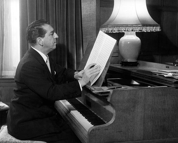 楽器「Annunzio Mantovani」:写真・画像(11)[壁紙.com]
