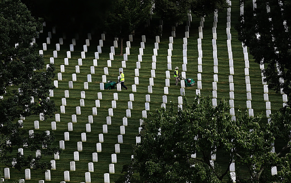 In A Row「Volunteers Take Part In Day Of Service To Improve Grounds At Arlington Cemetery」:写真・画像(17)[壁紙.com]