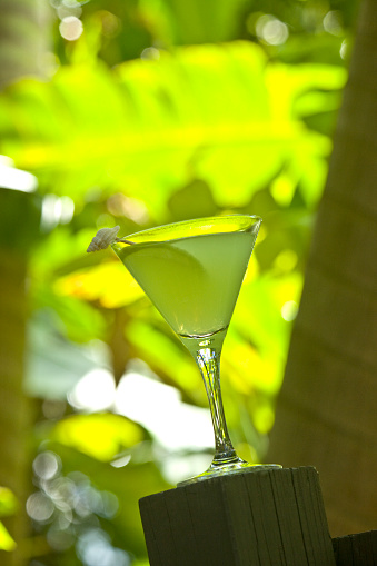 Cocktail「Cocktail with apple slice on a fence in Florida with a bright green leaf background」:スマホ壁紙(7)