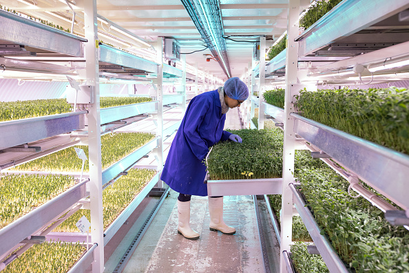 Agriculture「Urban Farming Goes Underground」:写真・画像(15)[壁紙.com]