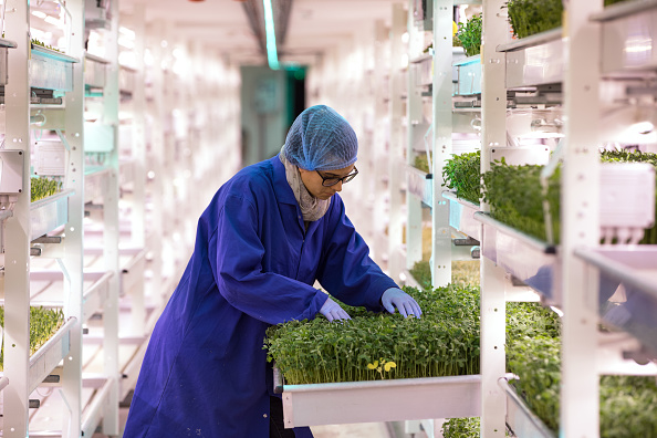 Agriculture「Urban Farming Goes Underground」:写真・画像(8)[壁紙.com]