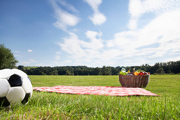 Germany, Cologne, Picnic basket and soccer ball in meadow:スマホ壁紙(壁紙.com)