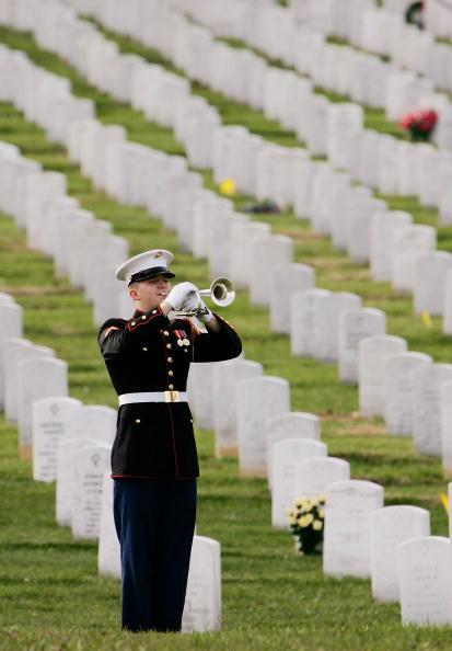 Focus - Concept「Iraqi War Casualty Buried At Arlington」:写真・画像(10)[壁紙.com]